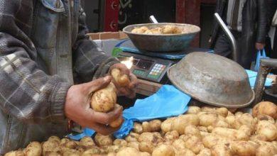 Photo of خروبي يكشف سبب ارتفاع سعر البطاطا واللحوم البيضاء