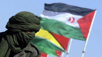 Photo of حركات التضامن والقوى السياسية في أفريقيا ترفض محاولات المغرب فرض الأمر الواقع الاستعماري في الصحراء الغربية