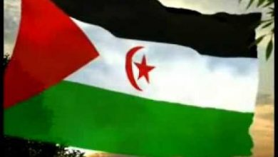 Photo of تجمع المواطنين للجالية الجزائرية بمدينة ليون يدعو الأمم المتحدة الى وقف تعنت المحتل المغربي في الصحراء الغربية