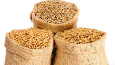Photo of الجريدة الرسمية: صدور قرار إعفاء الذرة والشعير وكل المواد الموجهة لتغذية المواشي والدواجن من الرسم على القيمة المضافة