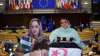 Photo of معارض مغربي : الأمم المتحدة مطالبة بالتدخل العاجل والفوري لحماية المدنيين الصحراويين من بطش الاحتلال المغربي